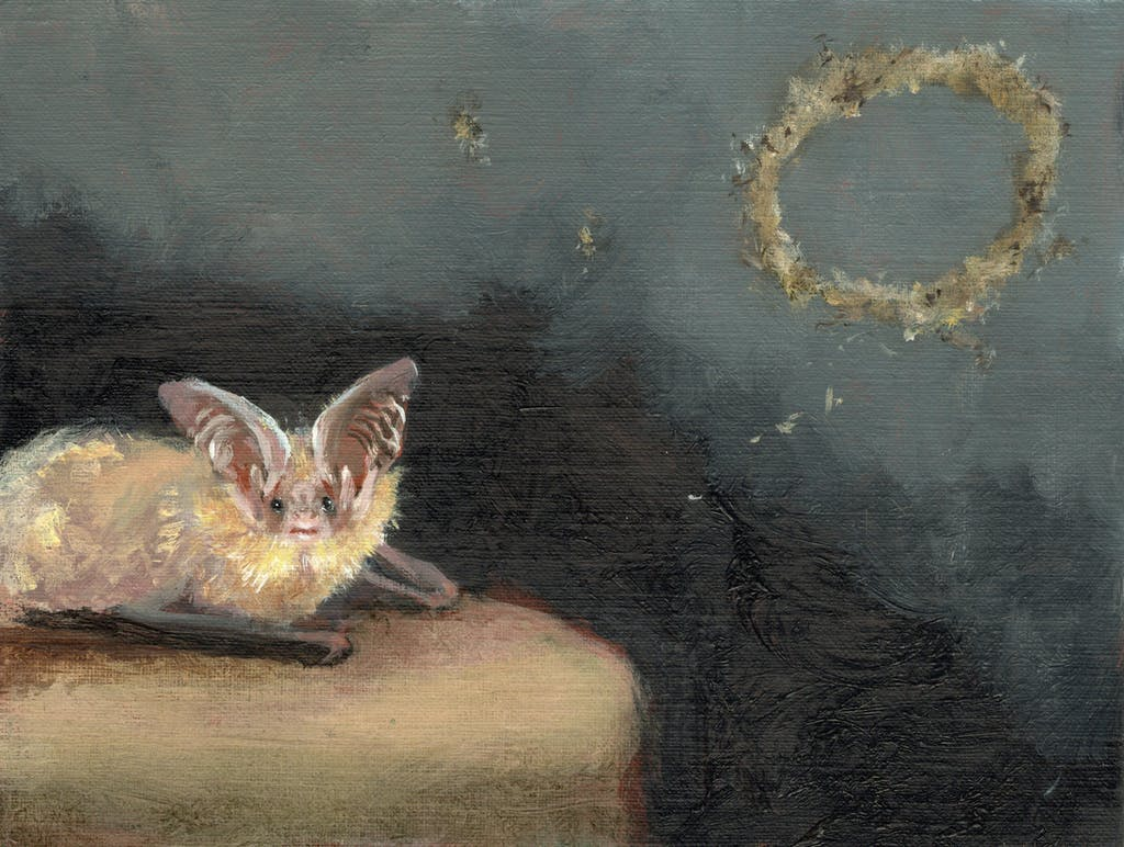 Bat Opera - © Paris Internationale